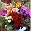 Lotus Designs Florist